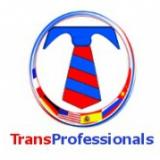 Transprofessionals