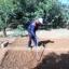 Ferme Agro écologique de Bayouf Palal